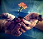 handflowermud